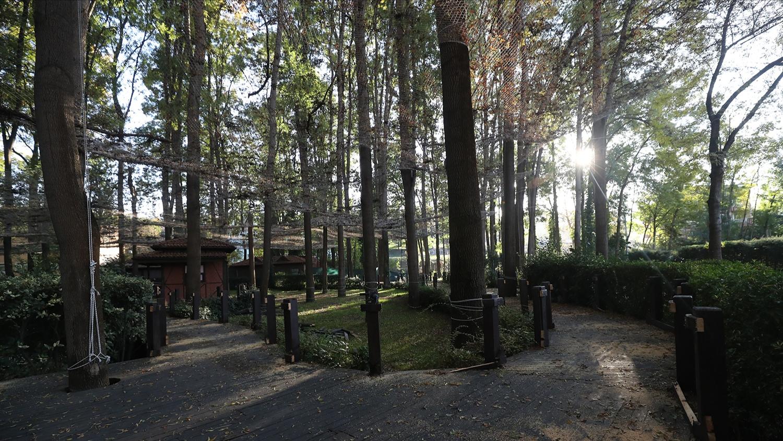 Orman Park yenilemeye başladı