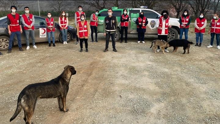 Sakarya İl Emniyet Müdürlüğü sokağa çıkma kısıtlamasında sokak hayvanları için seferber oldu
